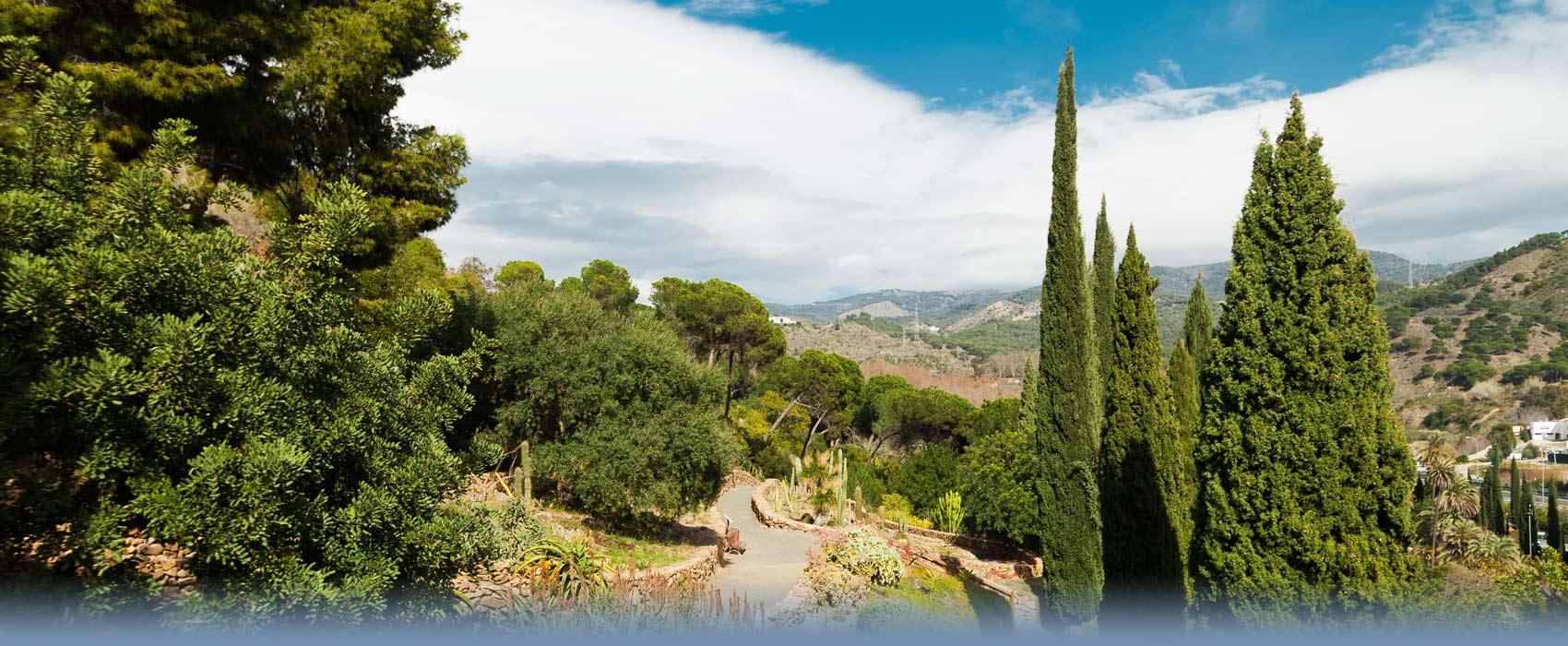 Der Botanische Garten von Malaga